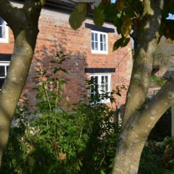 The Cottage self catering near Brackley